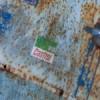 இரண்டாம் உலகப் போருக்குப் பின்னர் அமெரிக்காவால் அன்டனிஸ், பெல்ஜியத்தில் கைவிடப்பட்ட கார்கள்…